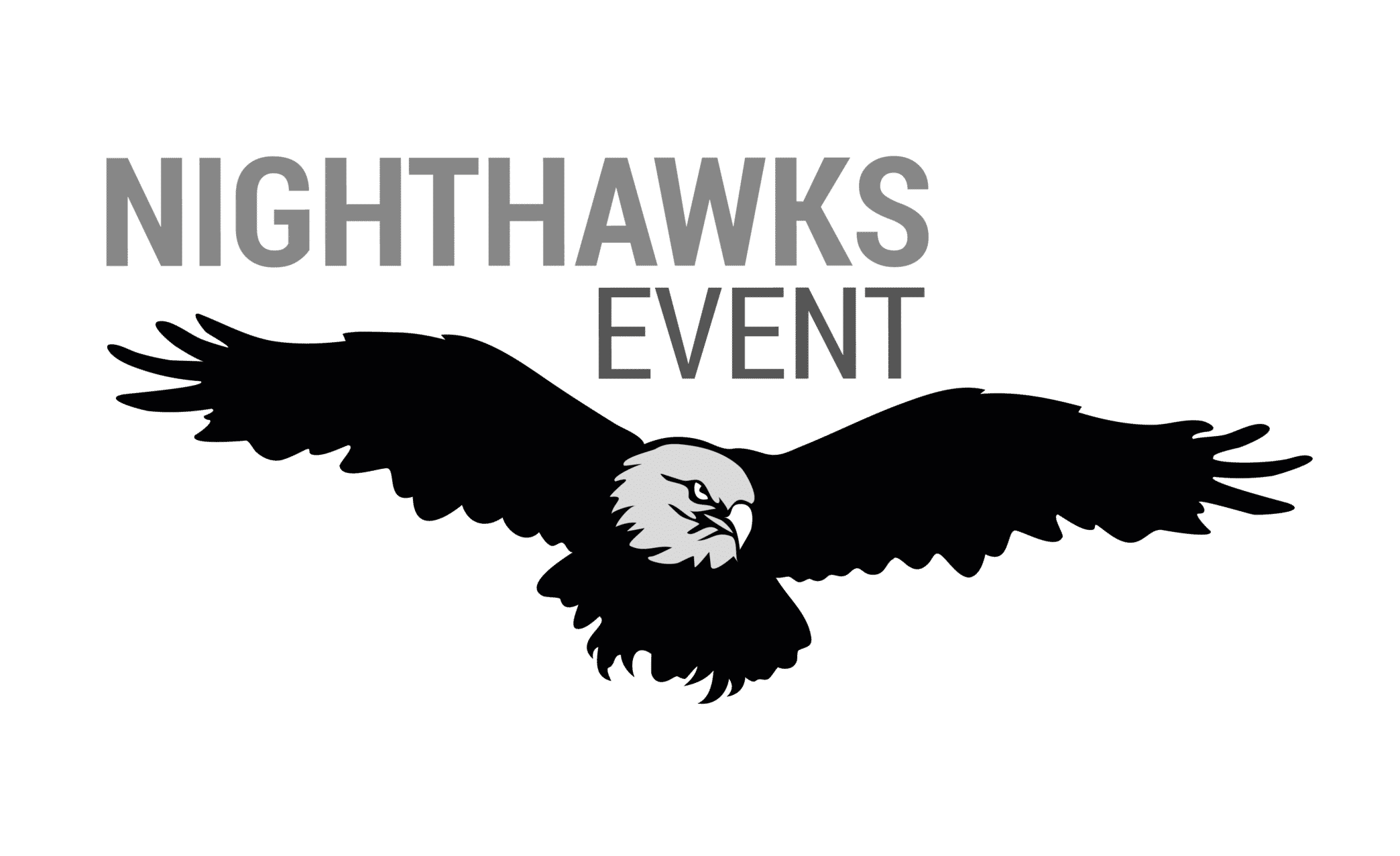 logo nighthawks even - technicien son lumière spectacle